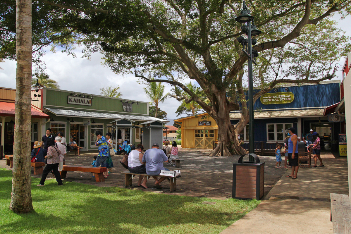 Haleiwa Store Lots, Honolulu