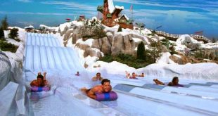 Top 10 Water Parks in Orlando