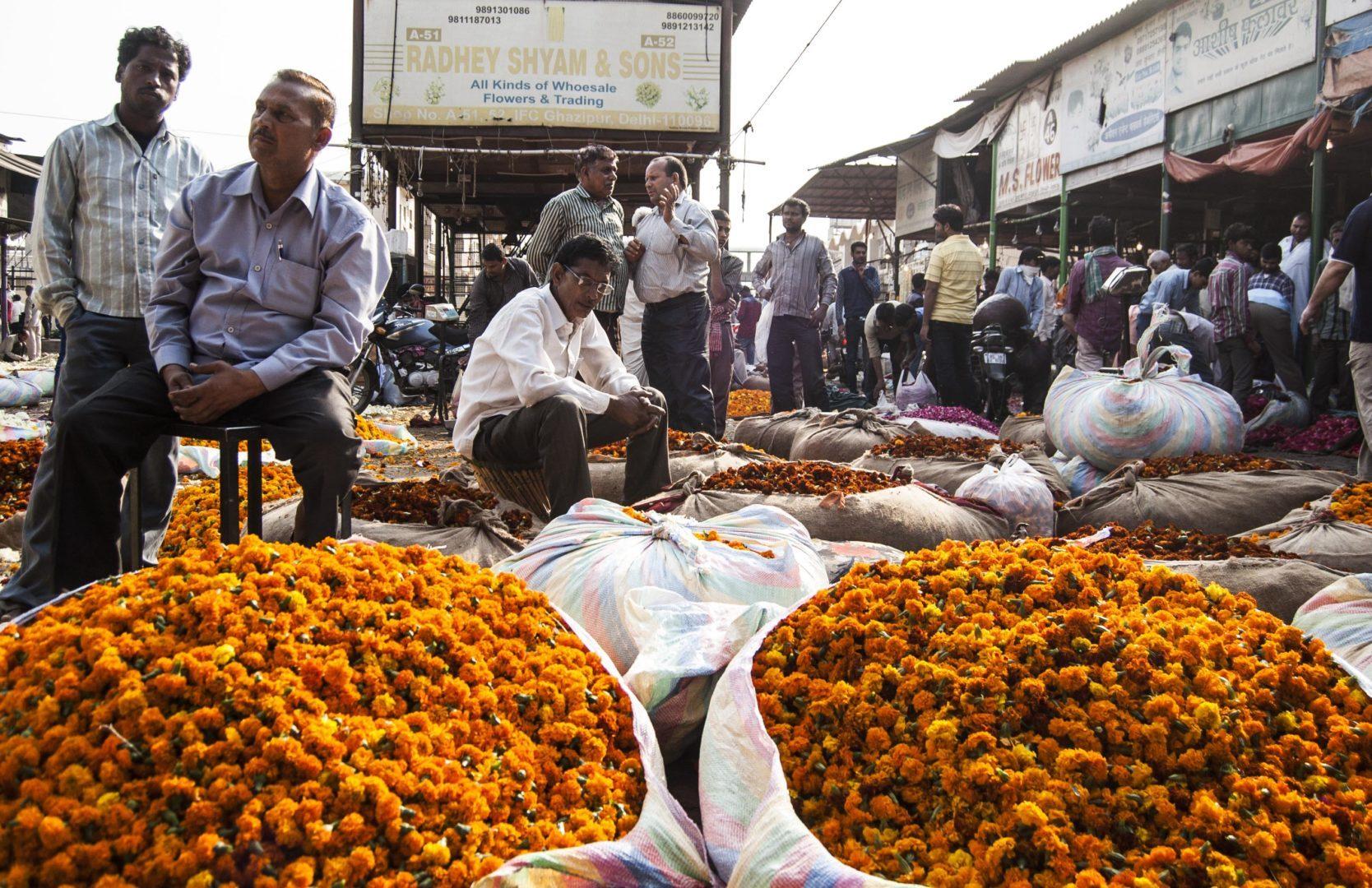 Ghazipur flower market