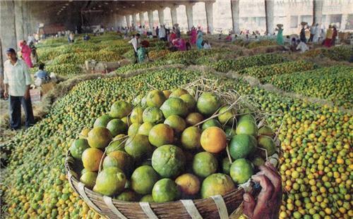 Phule Market, Nagpur
