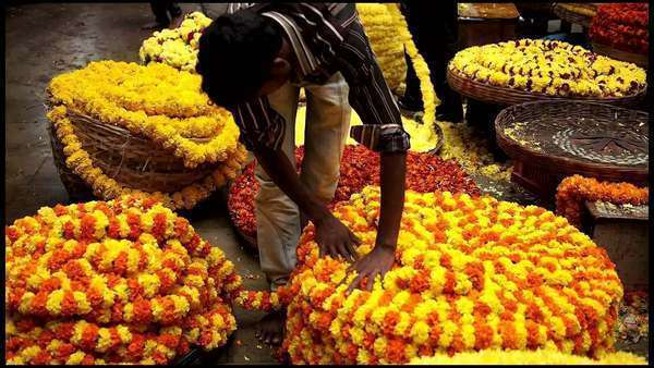 Gudimalkapur Flower Market, Hyderabad