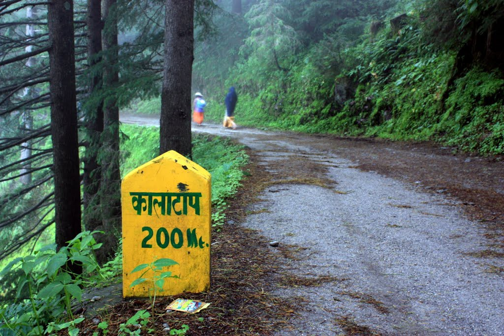 Kalatop Wildlife Sanctuary, Khajjiar