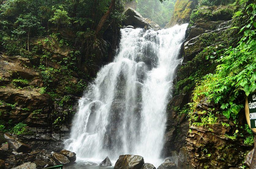 Witness verdant greenery at Lalgulli Falls