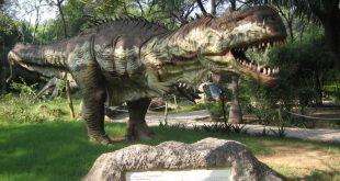 Balasinor Dinosaur Fossil Park, Gujarat – World's largest Dinosaur Fossil Park