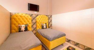 Cretterati, Gurgaon – India's first Luxury Dog Hotel