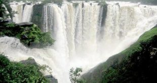 Top 20 Highest Waterfalls in India - India's Biggest Waterfalls