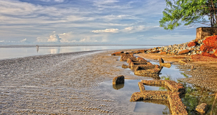 Chandipur Beach - A Place of Mysteries