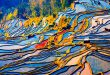 Yuanyang Rice Terraces - The Chinese Rice Terraces of Dreams