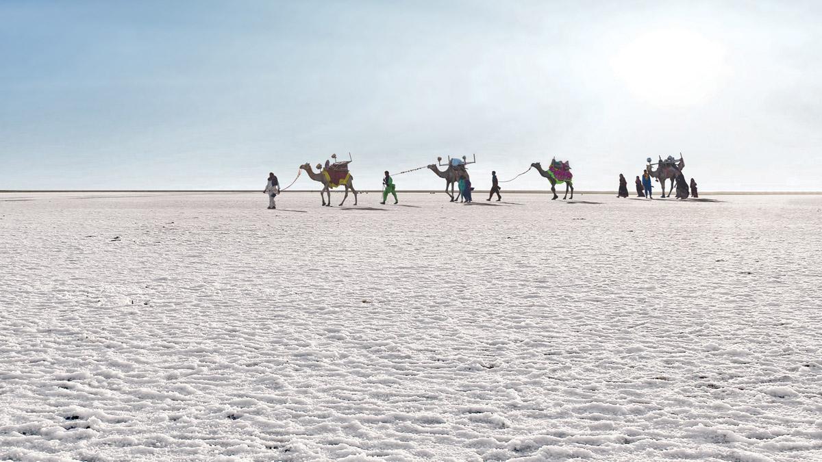 Rann of Kutch – The White Desert of Gujarat