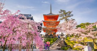 Top Must-Visit Asian Destinations Of The Rich